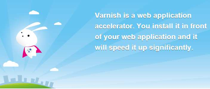 Varnish web cache Varnish è