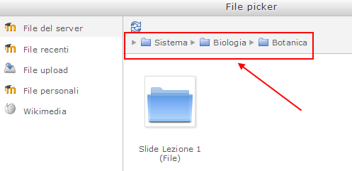 In alternativa è sempre possibile fare ricorso al File Picker, come indicato precedentemente.