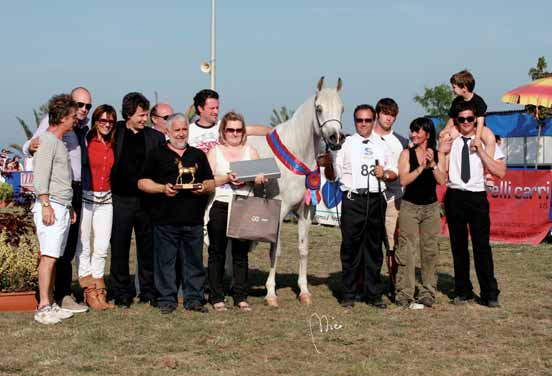 Champion AG Samsarah IMPERIAL BAARILLLA 3 a Cl. Fattrici 4/5/6 anni/3 a Pl. Mares 4/5/6 years old Trovò.