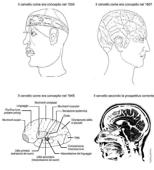 Figura 1.2 Comprensione del cervello Da: Czerner TB (2001). What makes you tick? The brain in palin English.