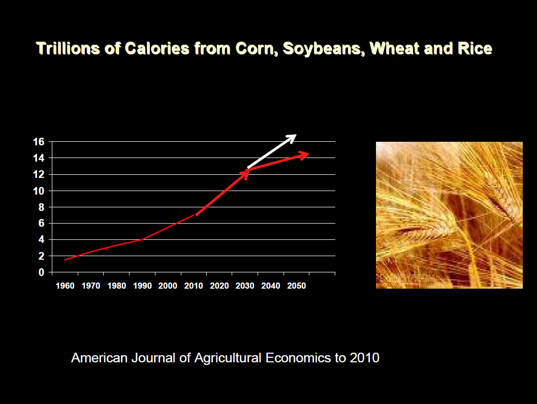 GLOBAL FOOD DEMAND: