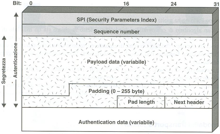 3.6 L Encapsulating Security Payload (ESP).