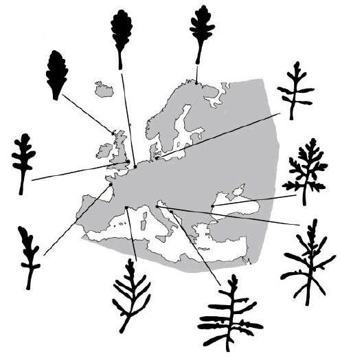 Parte 4 a b c Fig. 4.18 - a) The European distribution of Cakile maritima s.l.. b) Geographical distribution of samplig localities and clusters of Cakile maritima individuals.