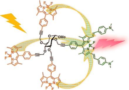 PL3 PHOTOINDUCED ENERGY/ELECTRON DYNAMICS IN MULTI-CHROMOPHORIC SUPRAMOLECULAR SYSTEMS F. Puntoriero, a T. Papalia, b A. Barattucci, a S.Campagna, a P. Bonaccorsi, a E. Trovato, a M. L.