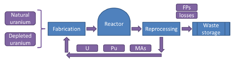 Closed cycle The Lead fast reactor allows the closure of the fuel cycle.