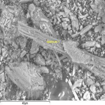 SEM + EDAX (energy dispersive X-ray analysis) Electron Image (Image Width: 84.1 µm)? CRISOTILO Summary results Weight % Weight % σ Atomic % Element Carbon 28.527 1.754 41.