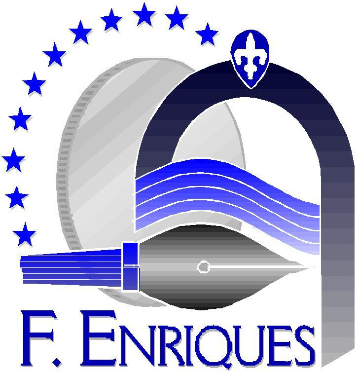 0571633083/ 4 - Fax 0571633593 www.isisenriques.gov.it CF.