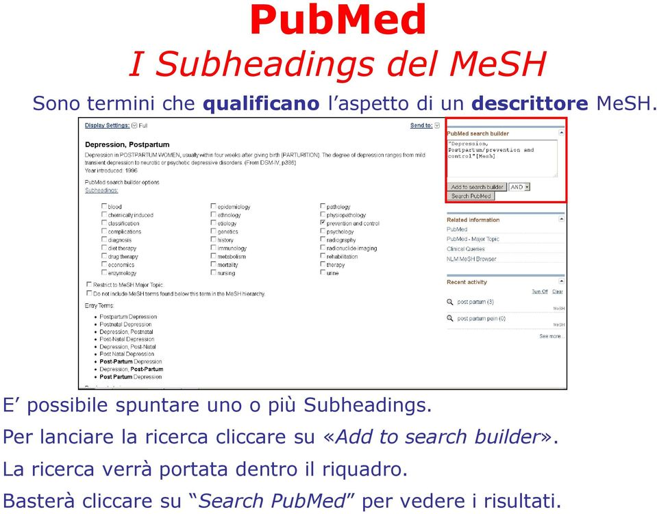 Per lanciare la ricerca cliccare su «Add to search builder».