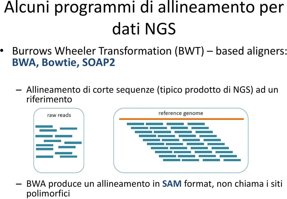 Allineamento di corte sequenze (tipico prodotto di NGS) ad un