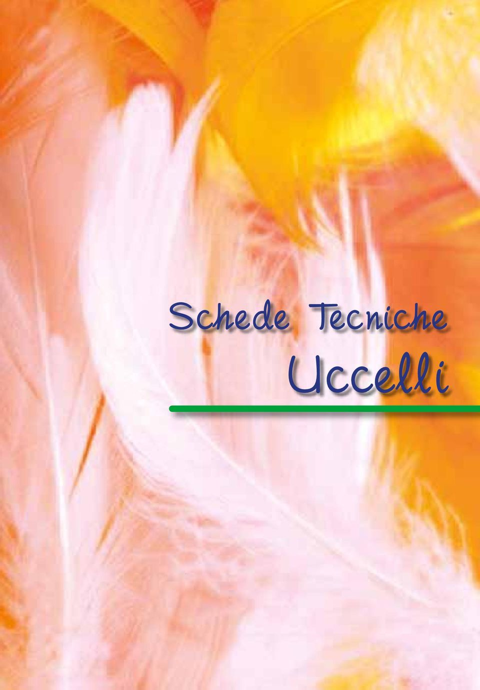 Uccelli 3