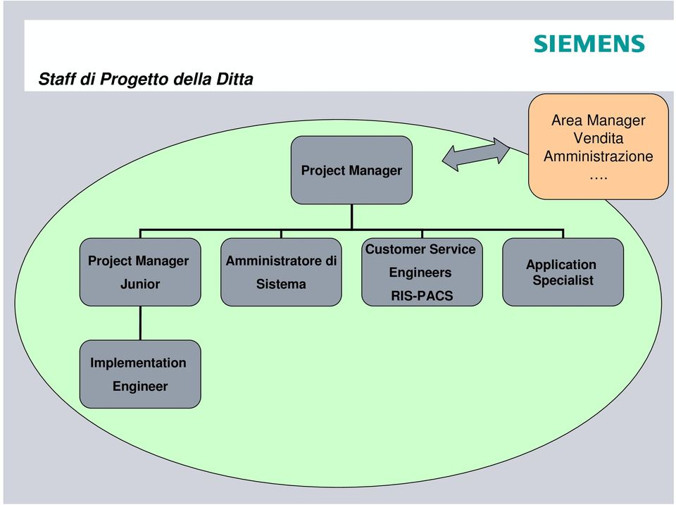 Project Manager Junior Amministratore di Sistema