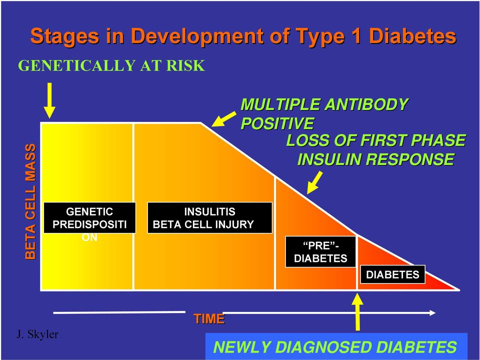 INJURY MULTIPLE ANTIBODY POSITIVE LOSS OF FIRST PHASE INSULIN