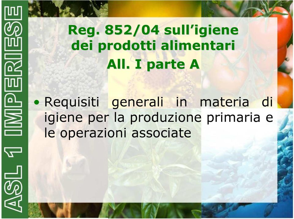 I parte A Requisiti generali in