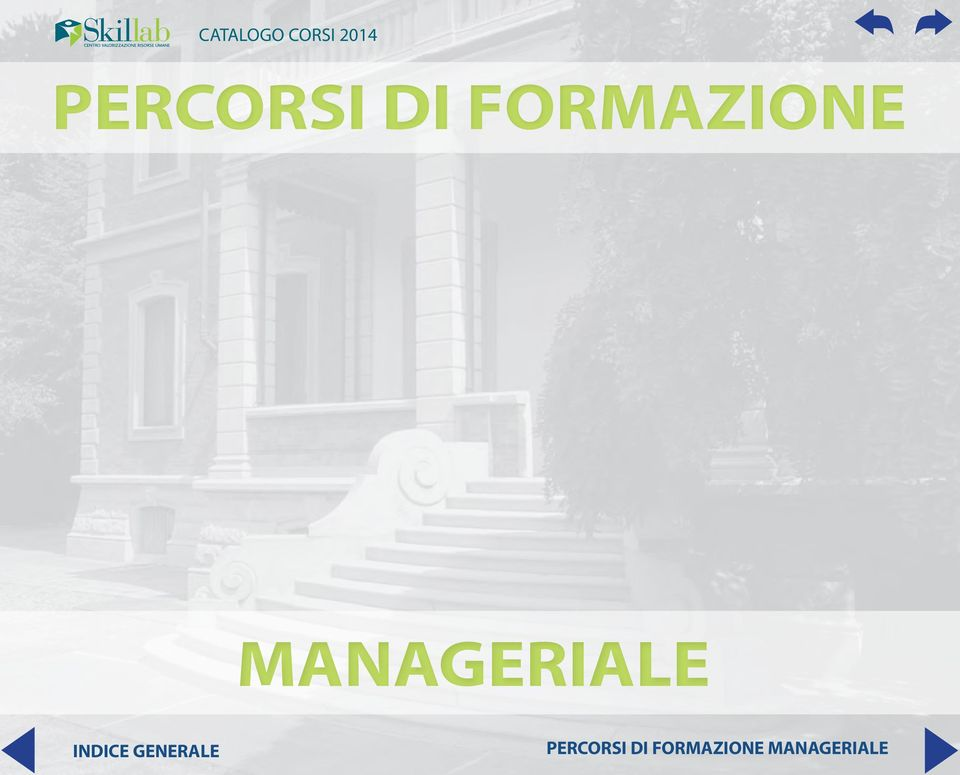 MANAGERIALE