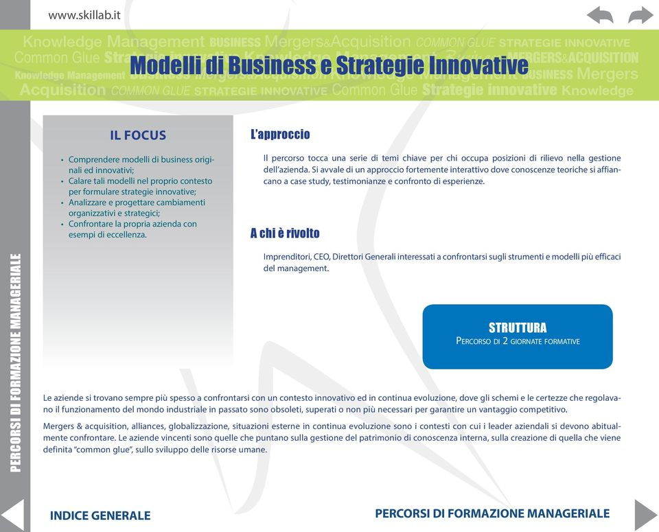 Modelli Mergers&Acquisition di Business e Knowledge Strategie Management InnovativeBUSINESS Mergers Acquisition COMMON GLUE STRATEGIE INNOVATIVE Common Glue Strategie innovative Knowledge IL FOCUS