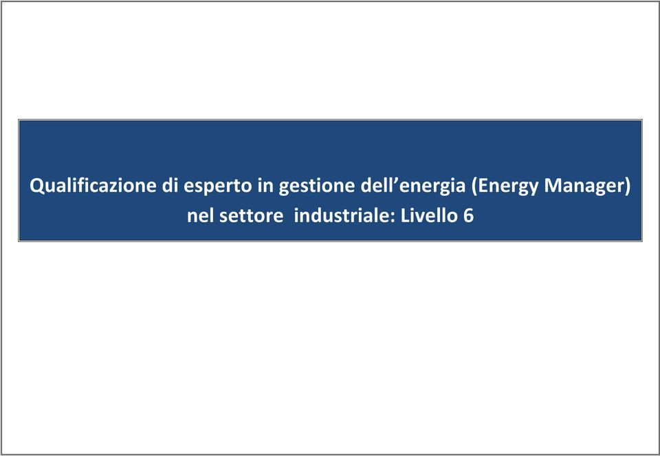 (Energy Manager) nel