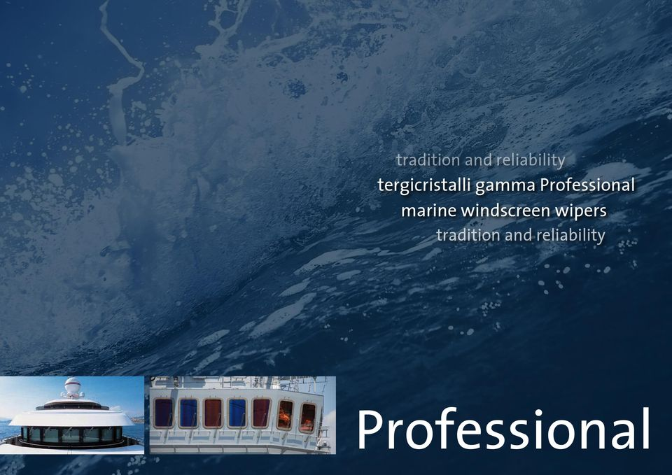 Professional marine windscreen
