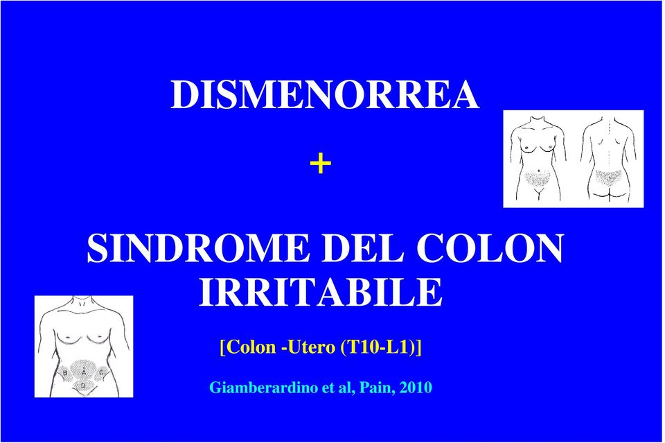[Colon -Utero (T10-L1)]
