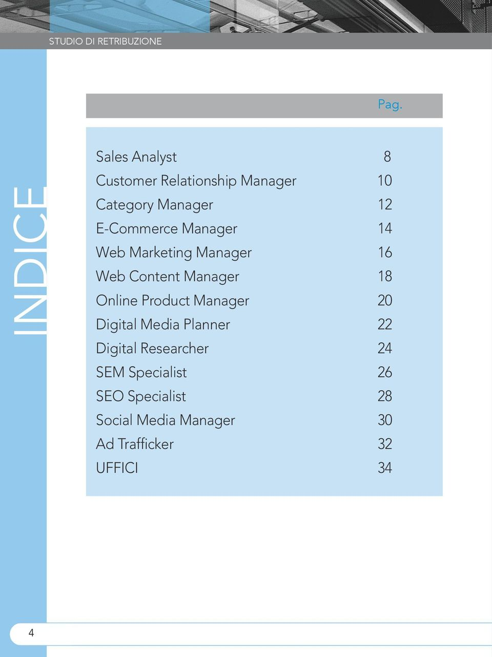 E-Commerce Manager 14 Web Marketing Manager 16 Web Content Manager 18 Online