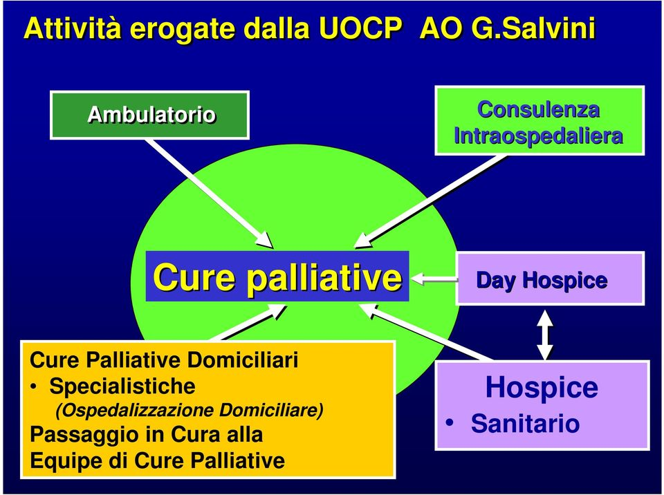 palliative Day Hospice Cure Palliative Domiciliari