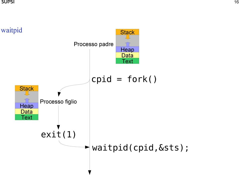 fork() Heap Data Text Processo