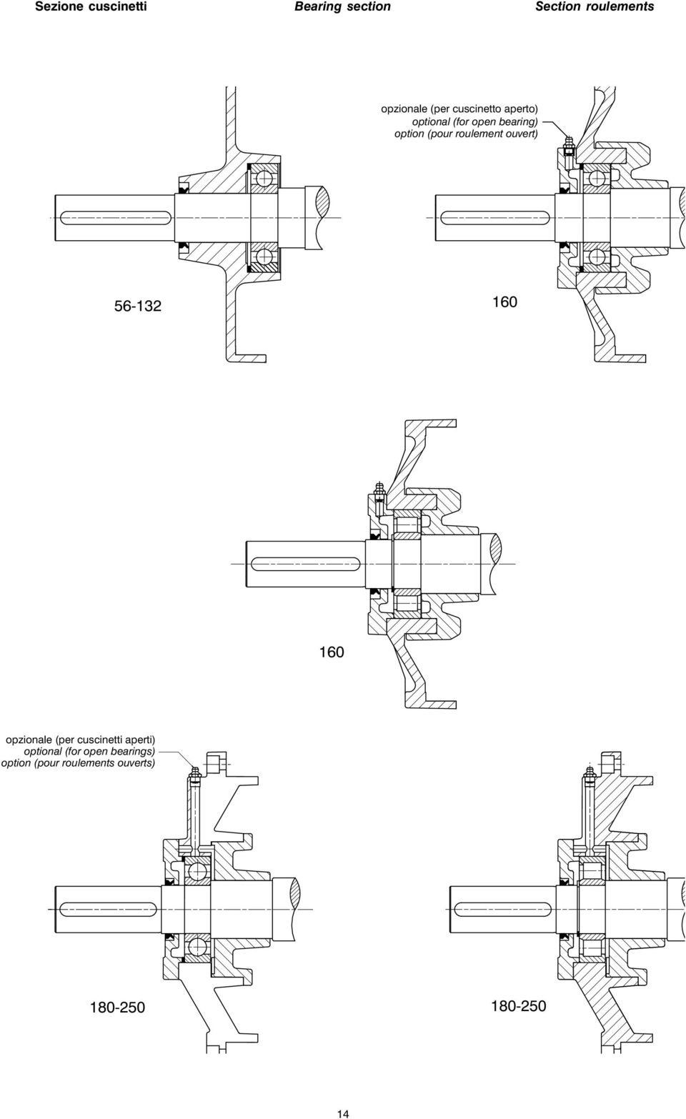 Motori elettrici antideflagranti ex d ex de explosion and for Drive end and non drive end of motor