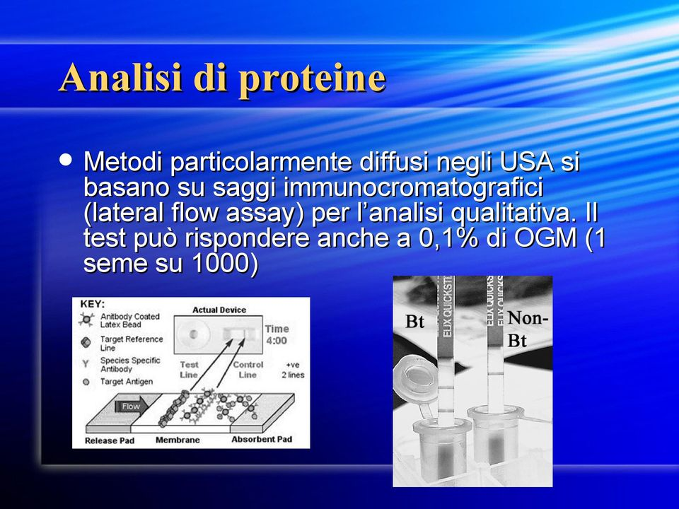 (lateral flow assay) per l analisi qualitativa.