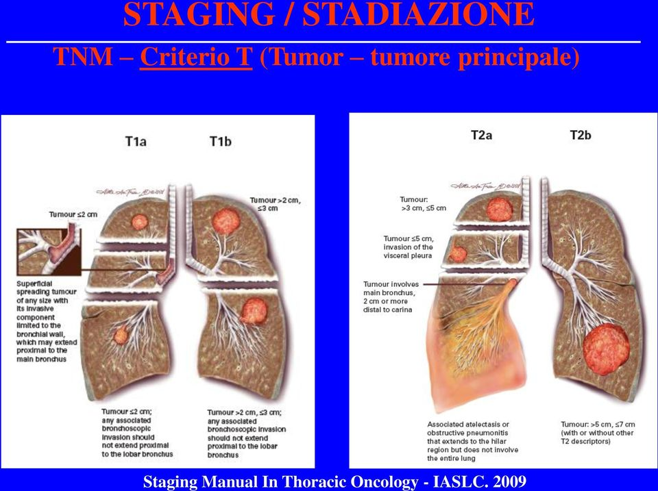 2009 STAGING / STADIAZIONE