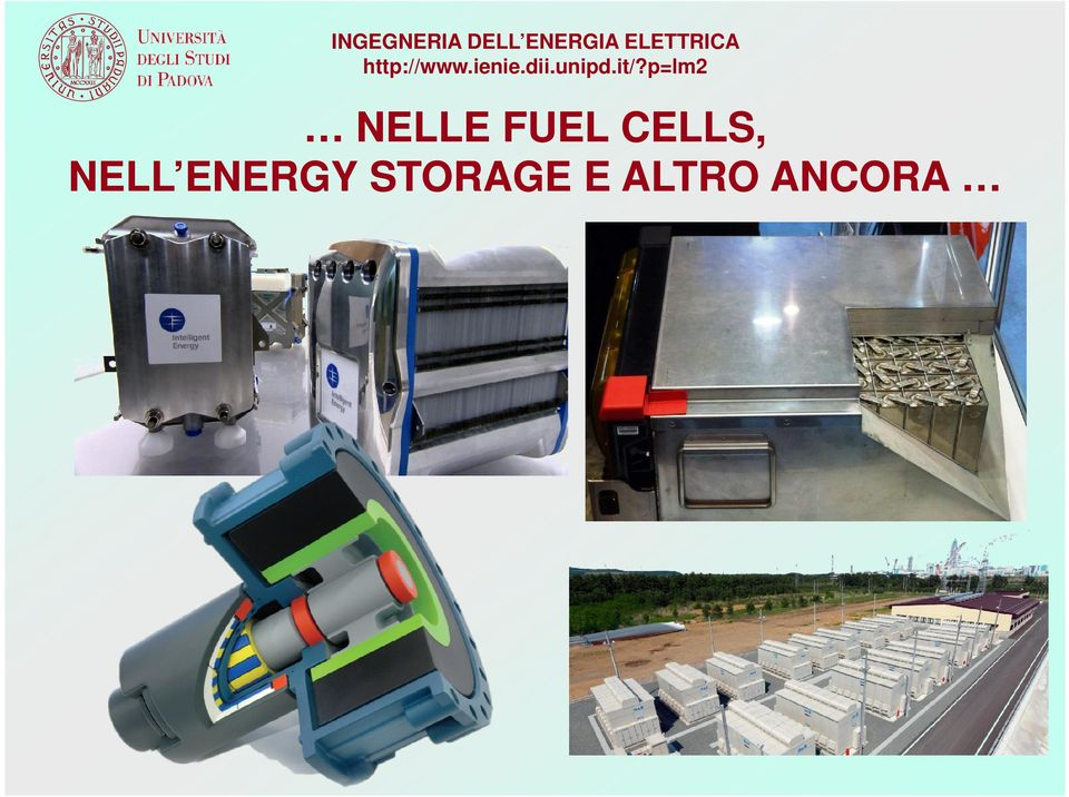 NELLE FUEL CELLS,