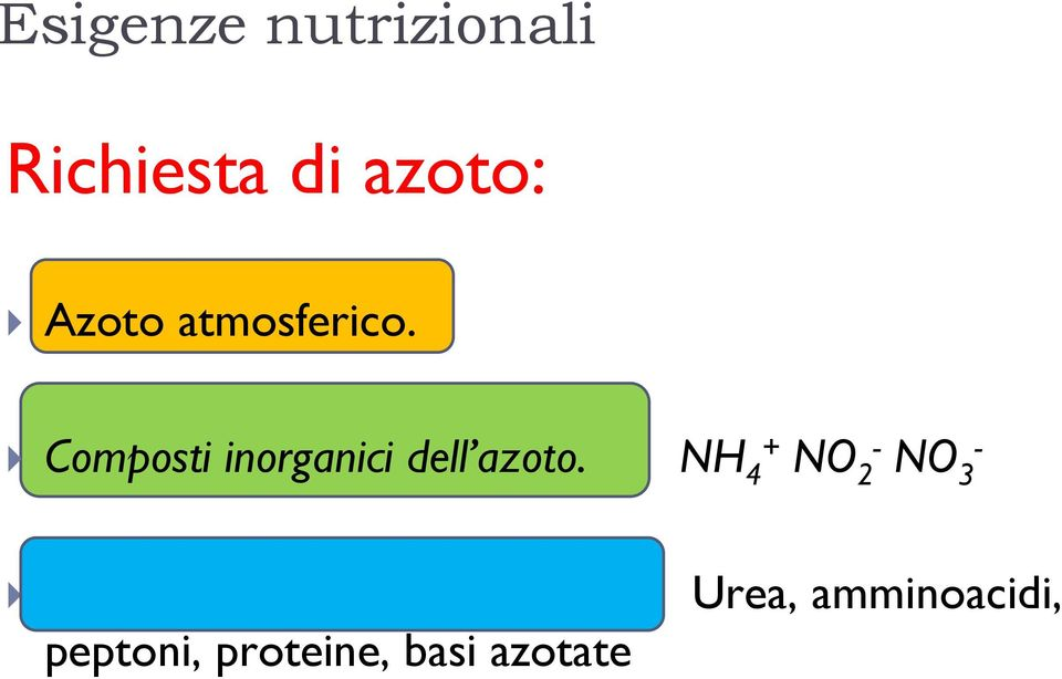 NH 4+ NO 2- NO 3 - Composti organici dell azoto.
