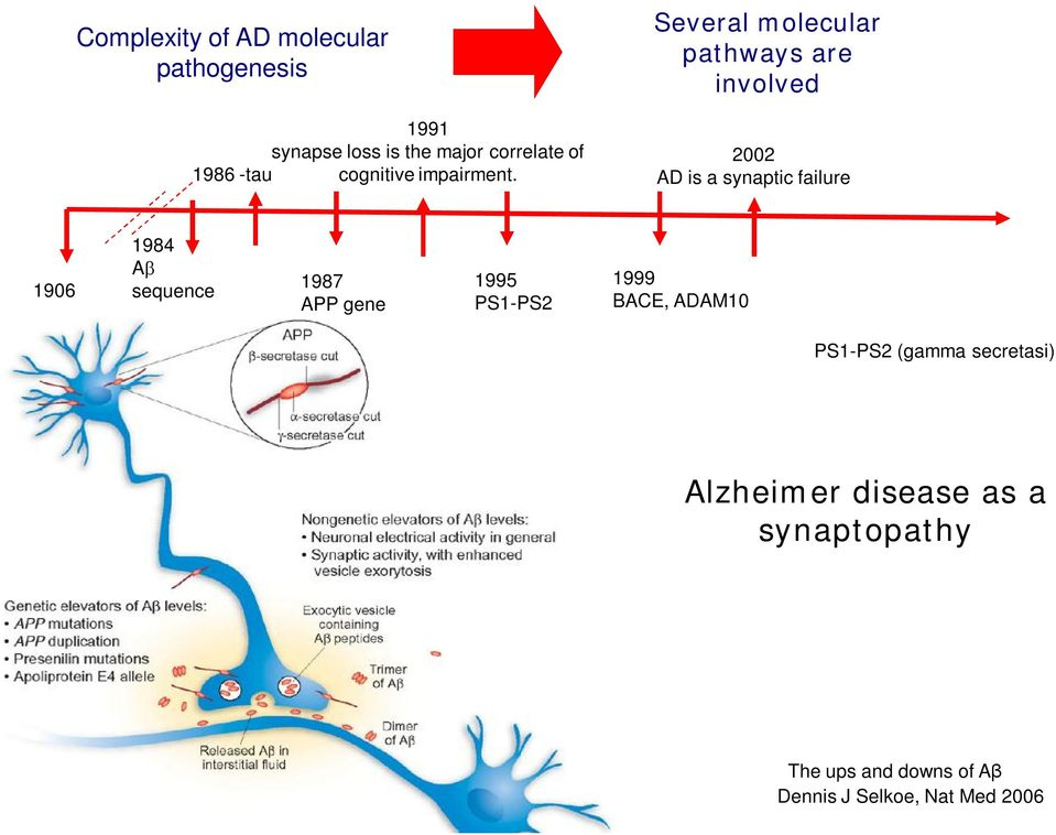 Several molecular pathways are involved 2002 AD is a synaptic failure 1906 1984 A sequence