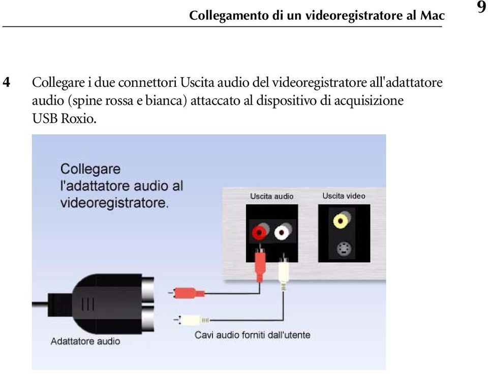 videoregistratore all'adattatore audio (spine rossa