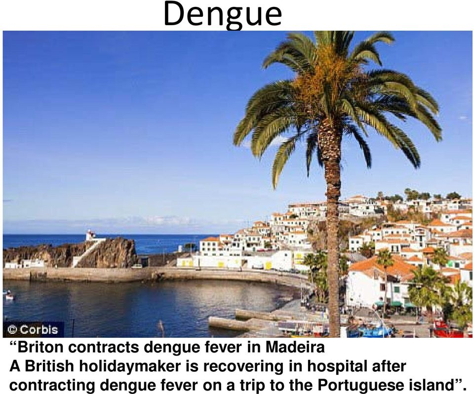 holidaymaker is recovering in hospital after