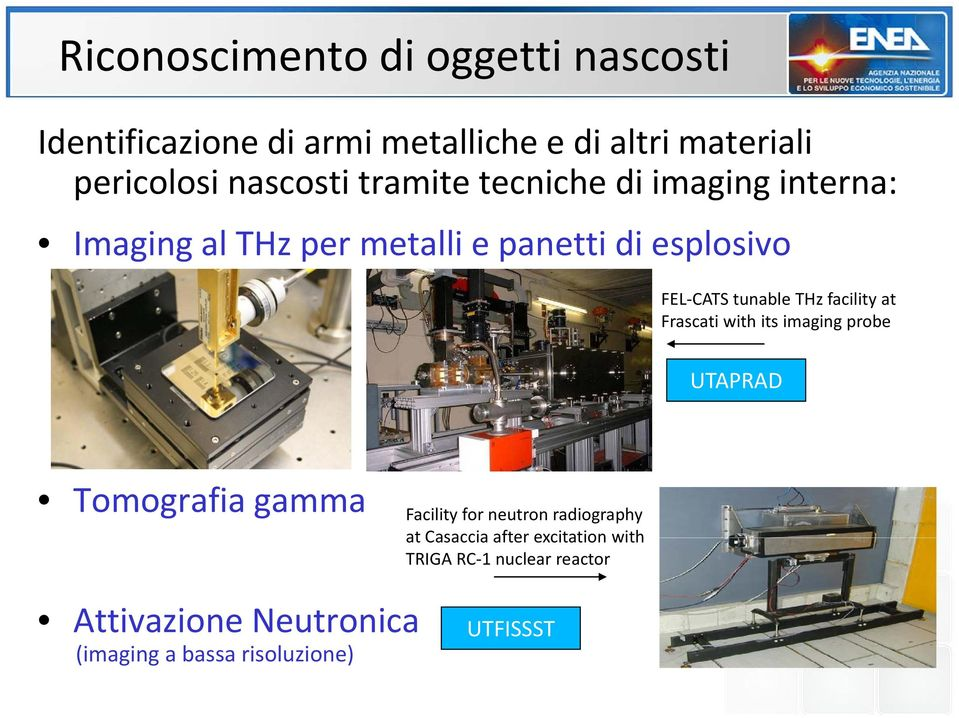 tunable THz facility at Frascati with its imaging probe Tomografia gamma Facility for neutron radiography at