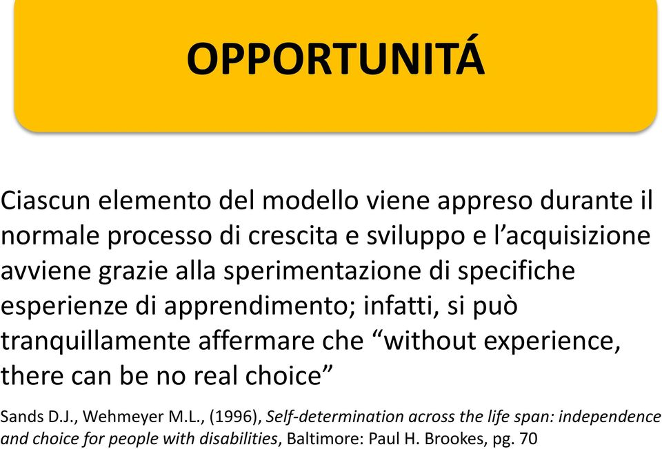tranquillamente affermare che without experience, there can be no real choice Sands D.J., Wehmeyer M.L.
