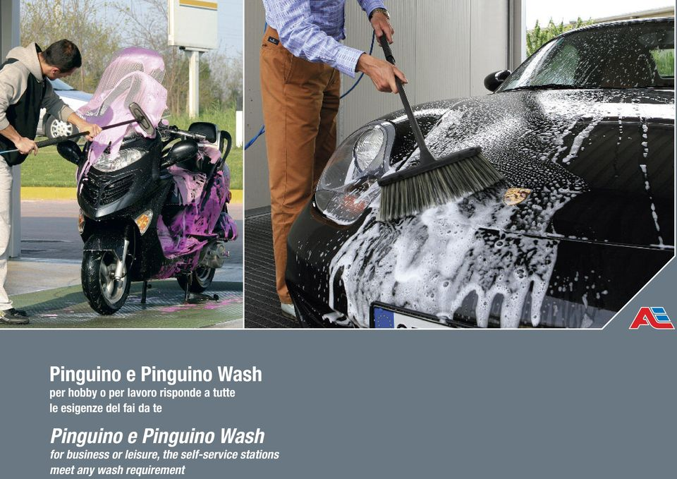 Pinguino e Pinguino Wash for business or