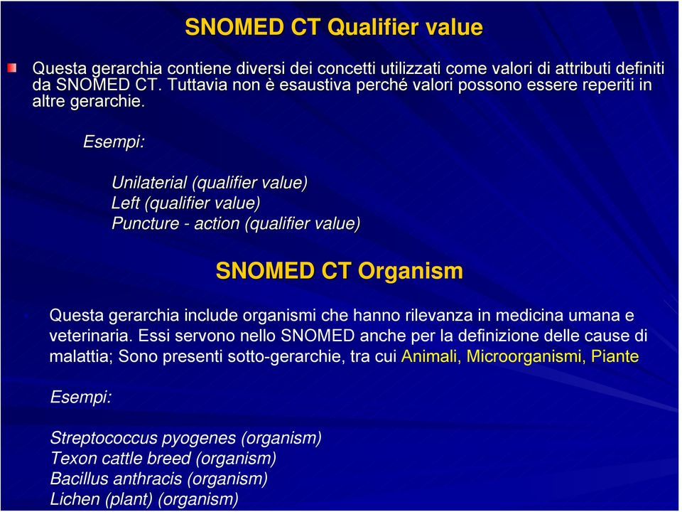 Esempi: Unilaterial (qualifier value) Left (qualifier value) Puncture - action (qualifier( value) SNOMED CT Organism Questa gerarchia include organismi che hanno rilevanza