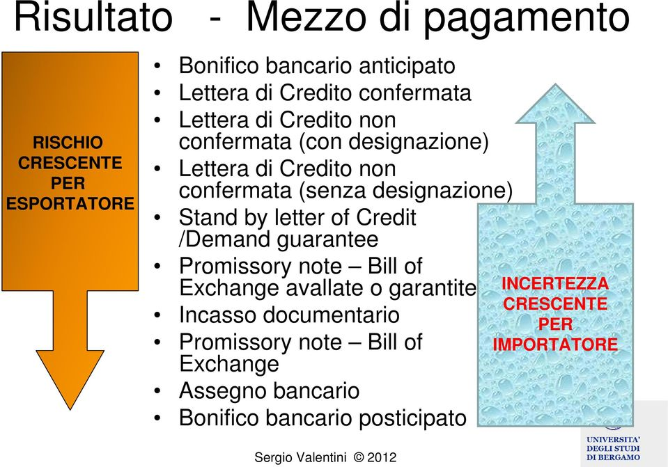 designazione) Stand by letter of Credit /Demand guarantee Promissory note Bill of Exchange avallate o garantite