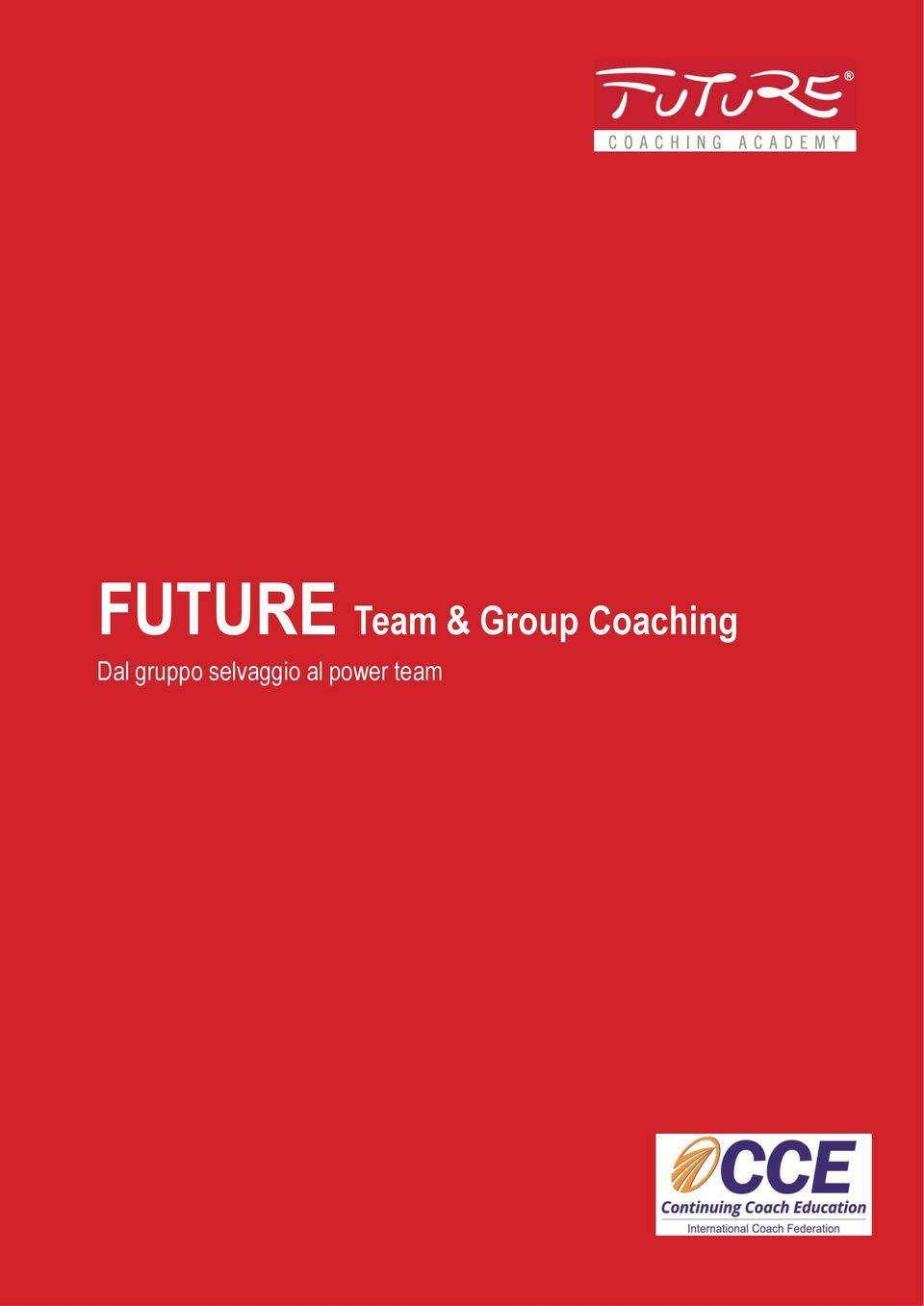 Group Coaching Dal