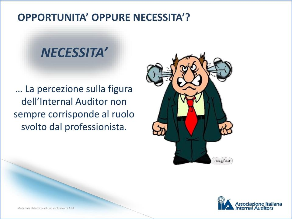 dell Internal Auditor non sempre