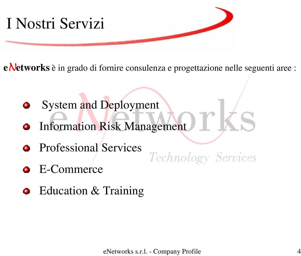 Information Risk Management Professional Services