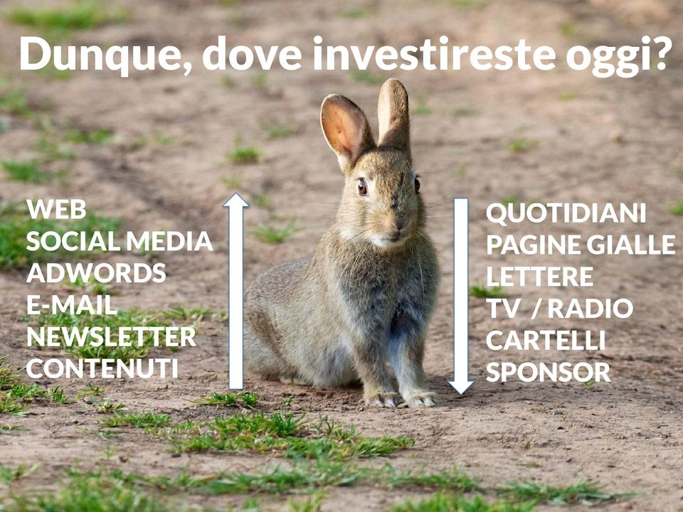 NEWSLETTER CONTENUTI QUOTIDIANI