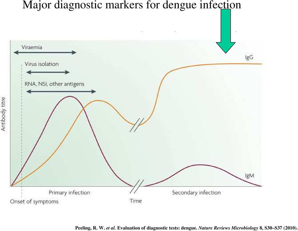 Evaluation of diagnostic tests: dengue.