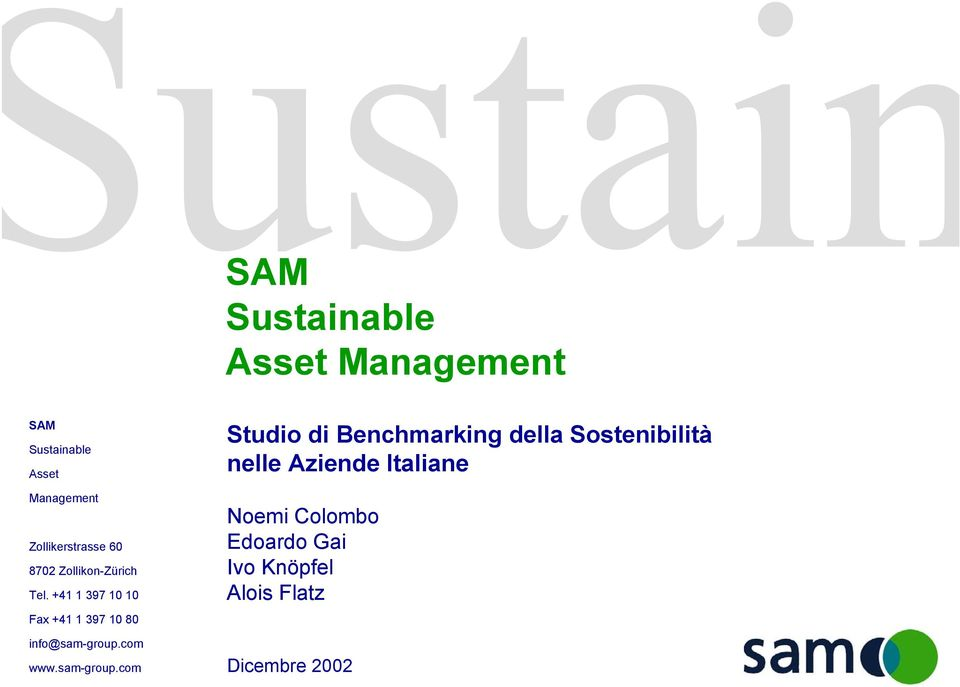 +41 1 397 10 10 Fax +41 1 397 10 80 info@sam-group.