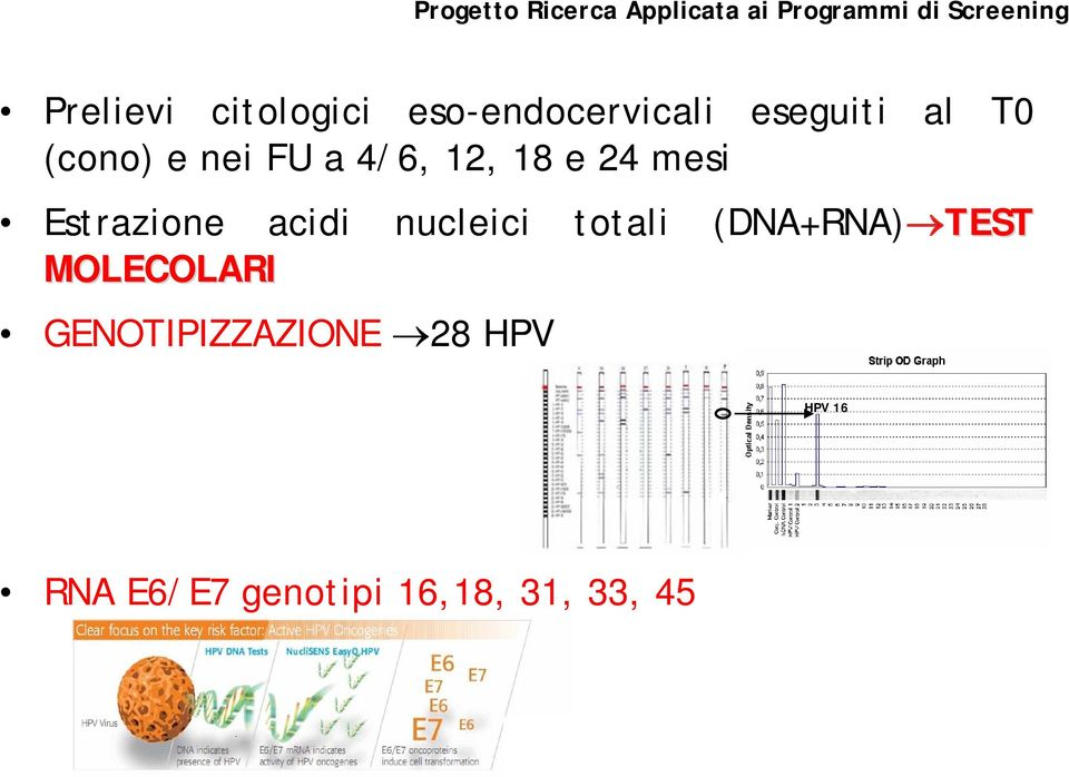 12, 18 e 24 mesi Estrazione acidi nucleici totali (DNA+RNA) TEST
