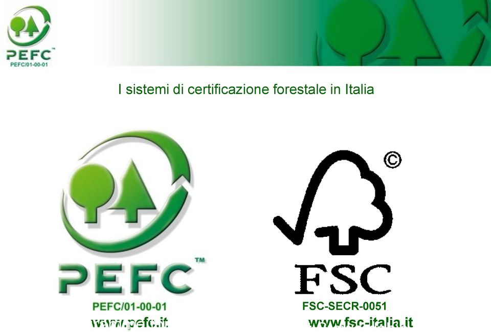 it for Endorsement of Forest Certification