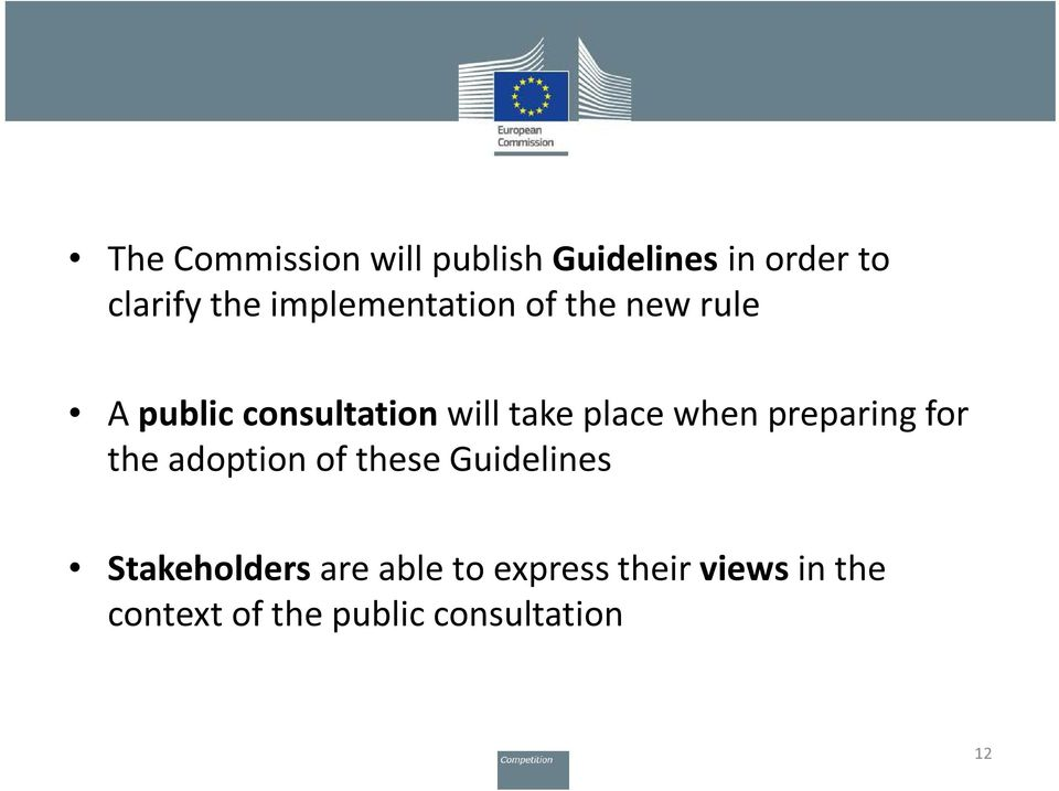 when preparing for the adoption of these Guidelines Stakeholders are