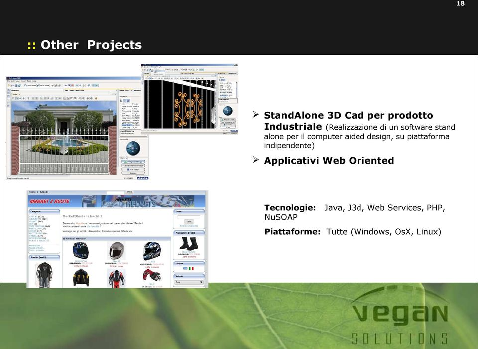 design, su piattaforma indipendente) Applicativi Web Oriented