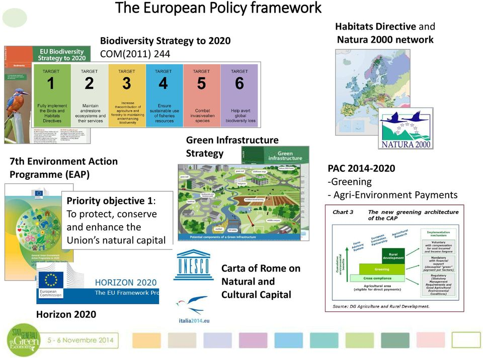 protect, conserve and enhance the Union s natural capital Horizon 2020 Green Infrastructure