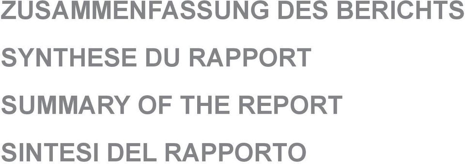 RAPPORT SUMMARY OF THE